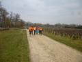 trail du vignoble 012